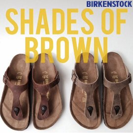 shades of brown 1