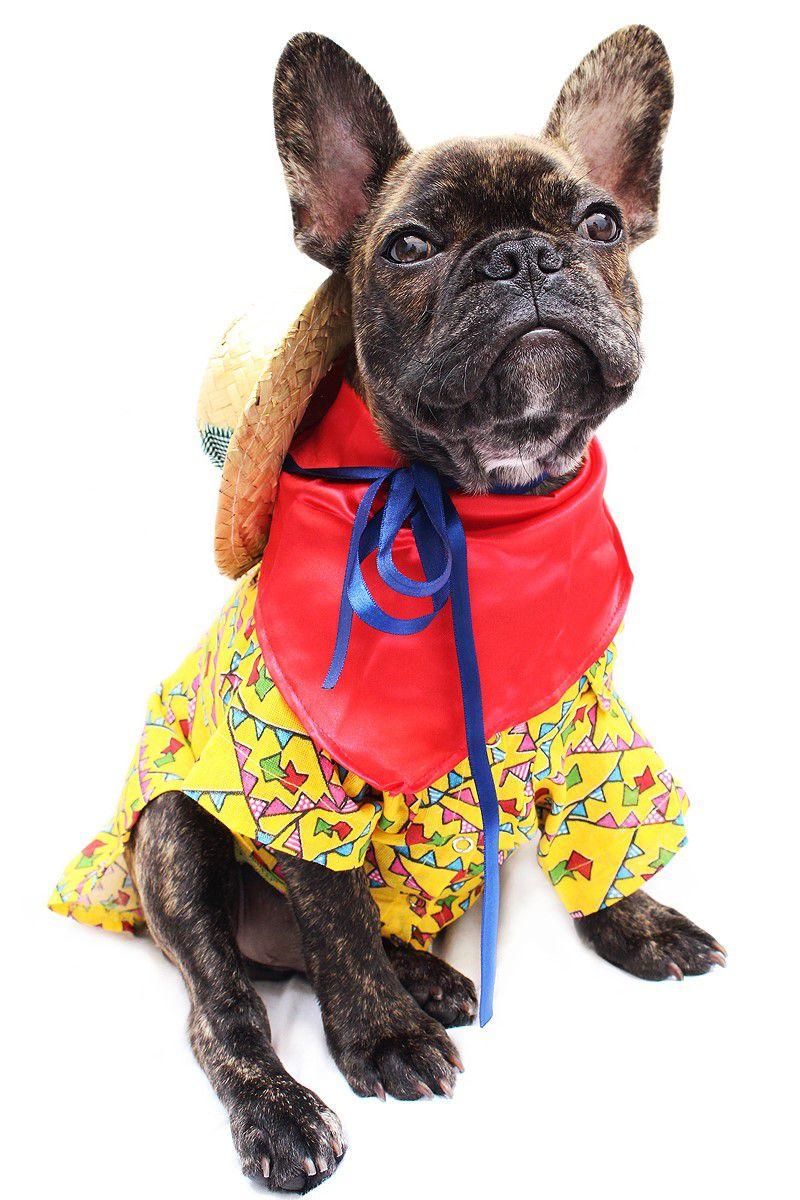 1e3931d241 Fantasia para Cachorro Caipira com Lenço - Zen Animal - Produtos ...