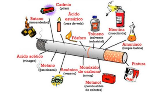 Diferença entre tabaco tradicional e tabaco orgânico