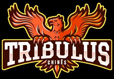 fructus-tribulus-terrestris