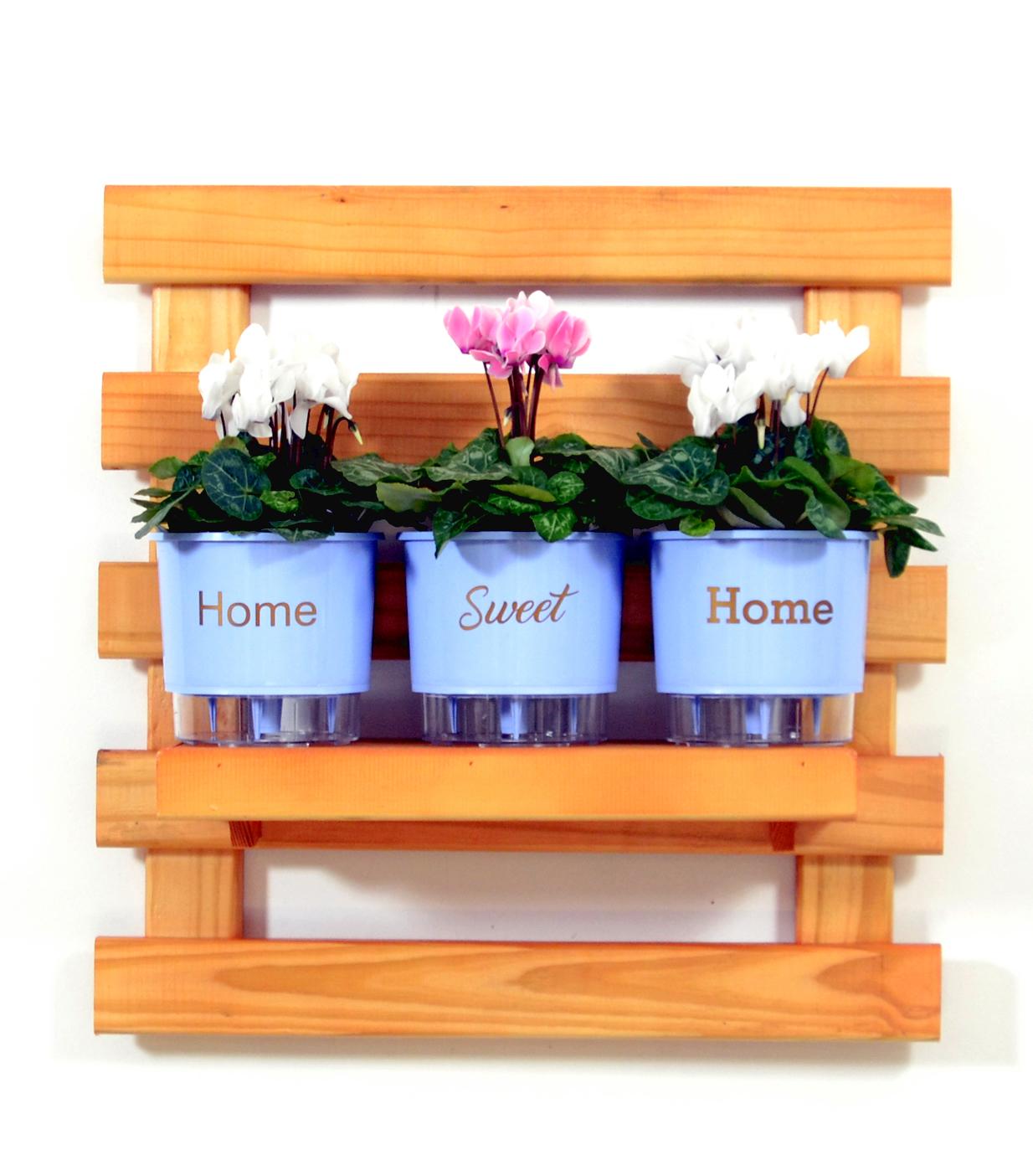 Horta vertical com vasos autoirrigáveis azuis
