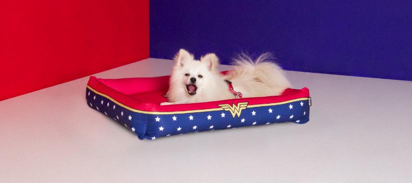 Cama Para Cachorros e Gatos Mulher Maravilha