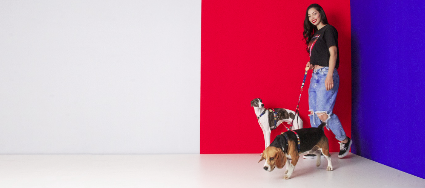 Guia Dupla para Cachorros Mulher Maravilha