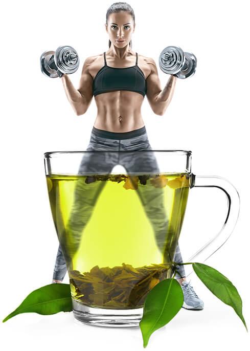 Chá verde contém cafeína - acelera o metabolismo