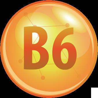 Vitamina B6 melhora a absorção do Zinco e Magnésio