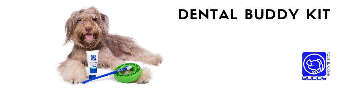 Dental Buddy