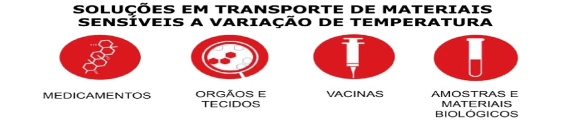 SOLUCOES EM TRANSPORTE