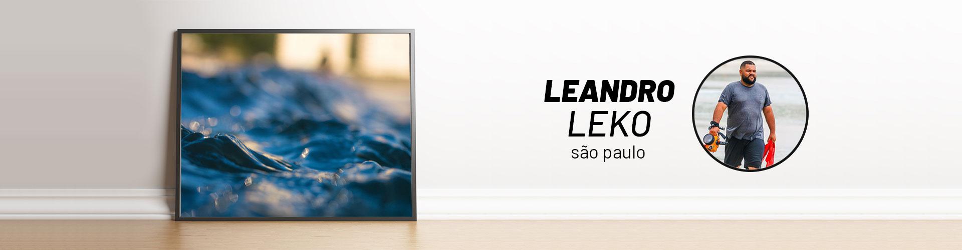 Página Artista | Leandro Leko