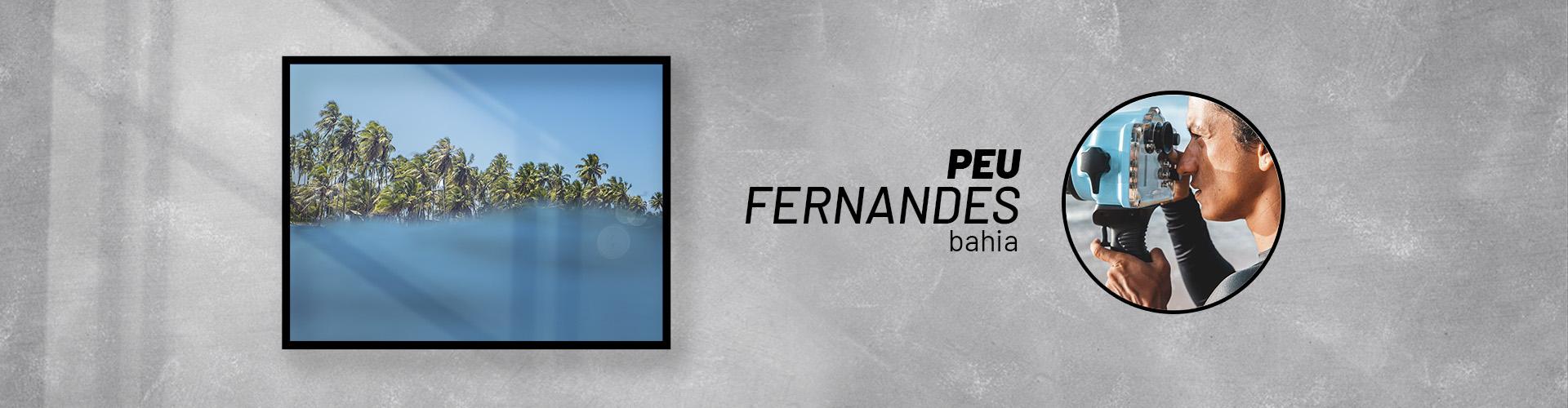 Página Artista | Peu Fernandes