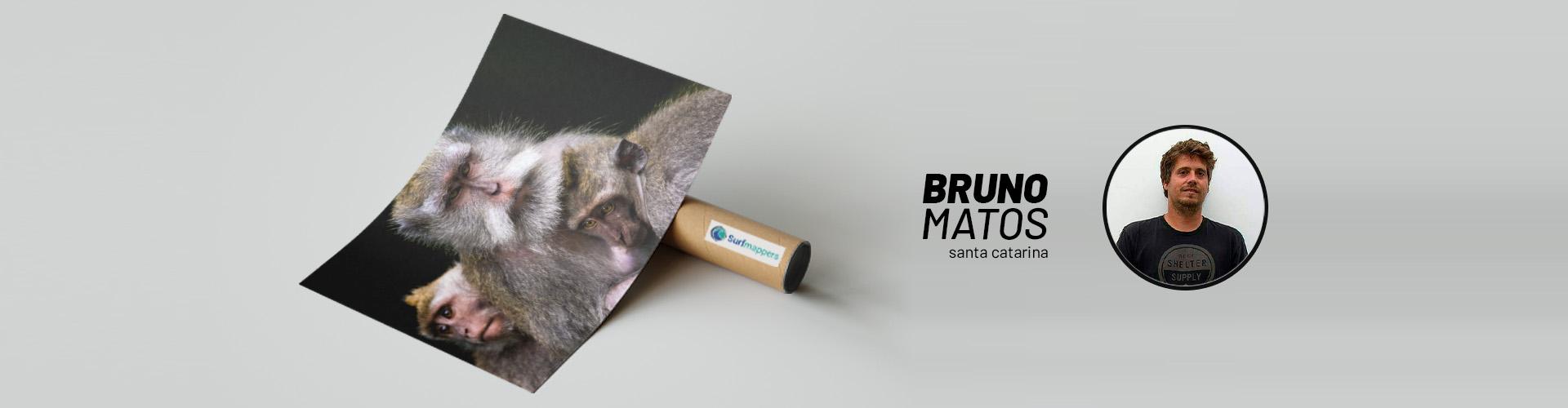 Página Artista | Bruno Matos