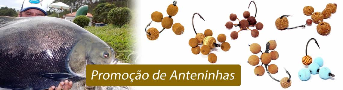 Full Anteninhas