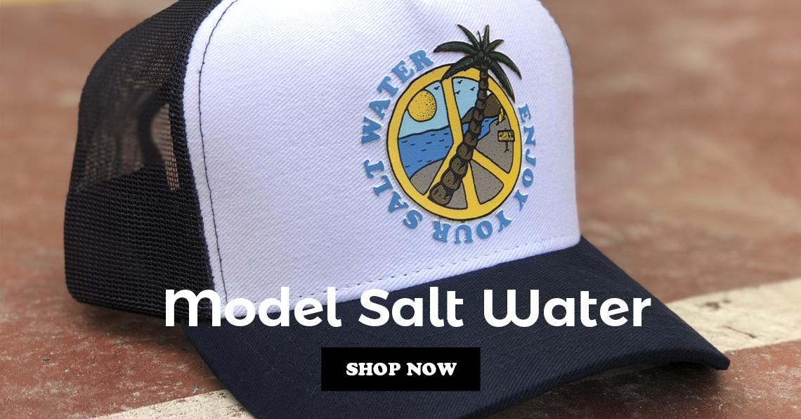 Model Salt Water