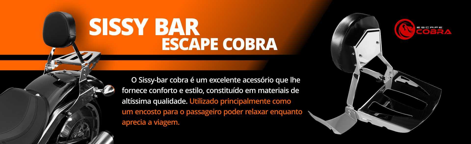 PRODUTO - ESCAPE COBRA 2
