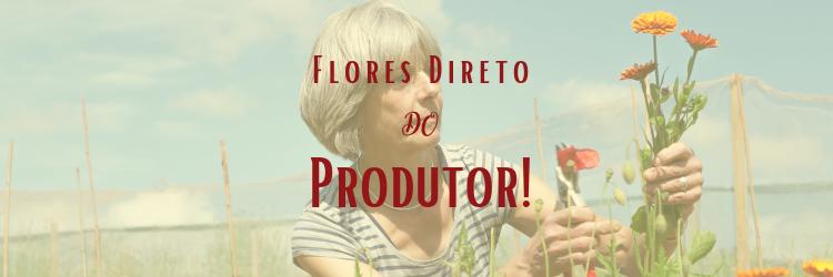 Flores direto do produtor