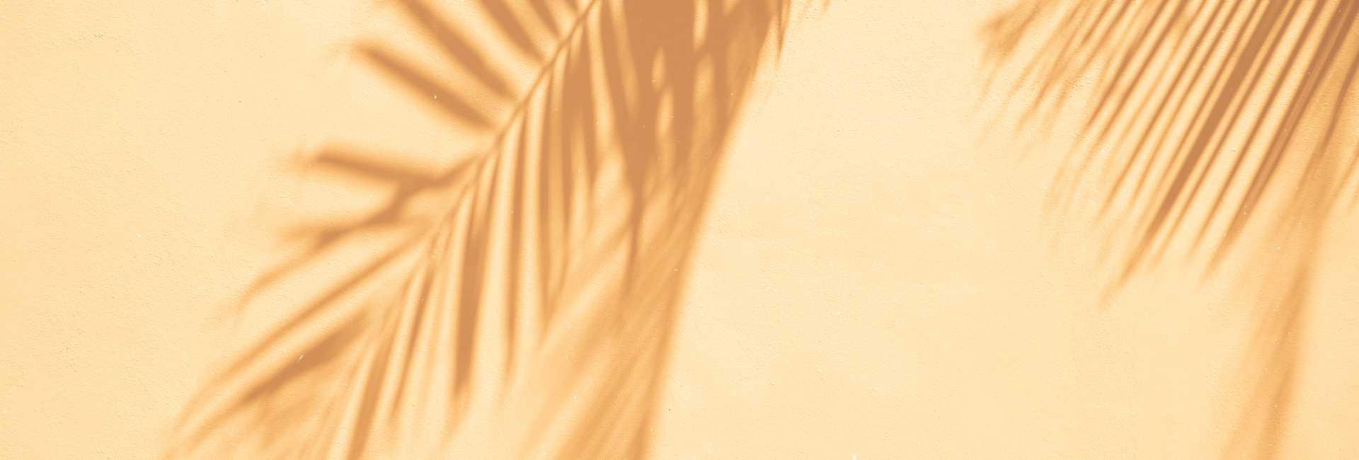 Banner Palm