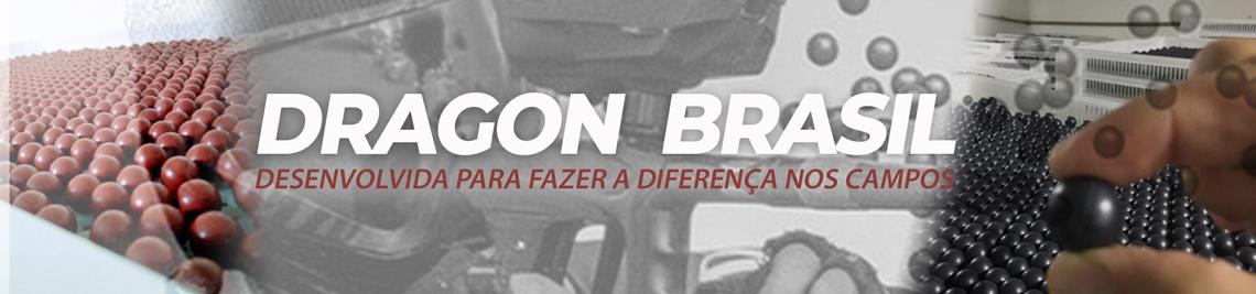 banner_dragon2