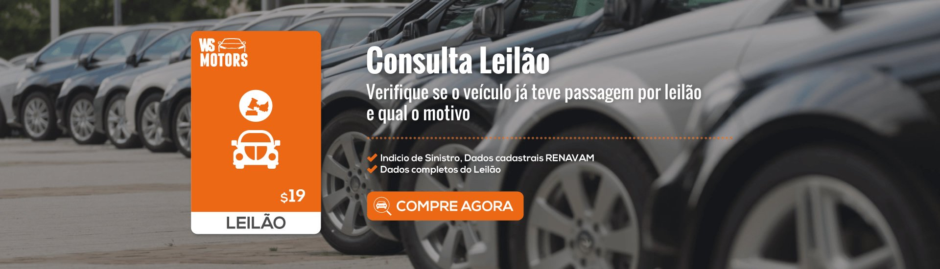 Consulta Leilão
