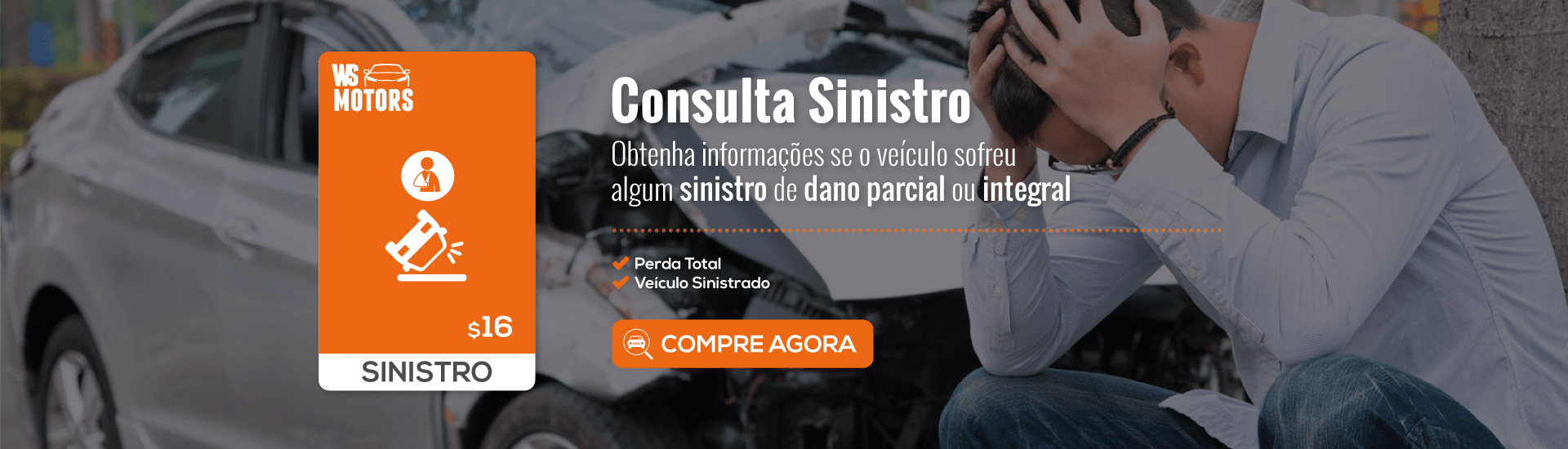 Consulta Sinistro