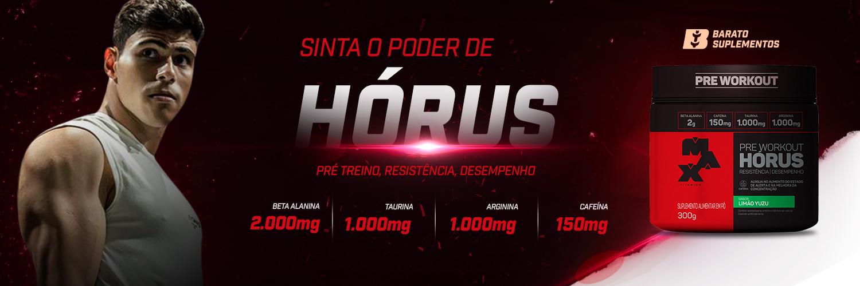 Banner Horus