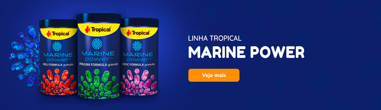 Linha Tropical