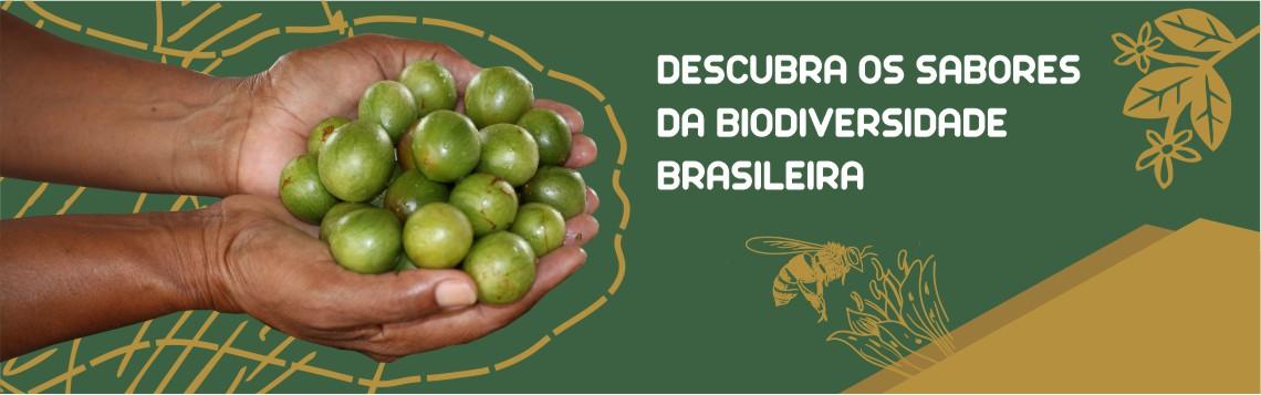 BIODIVERSIDADE BRASILEIRA RESERVA