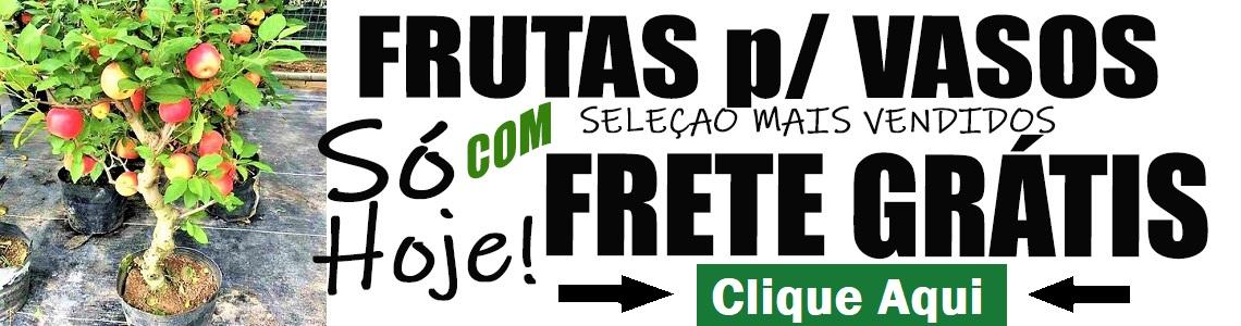fruta frete gratis