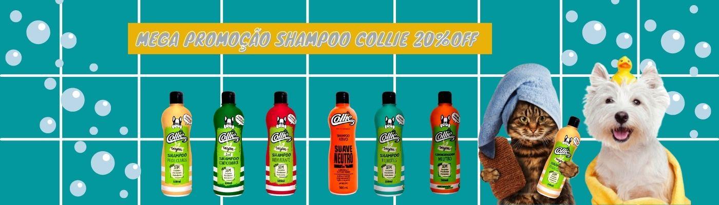 promoção shmpoo collie