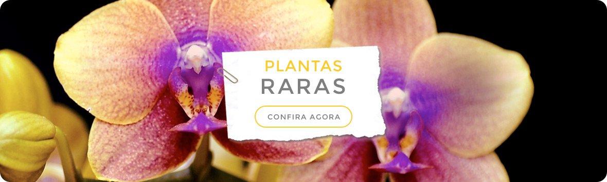 PlantasRaras