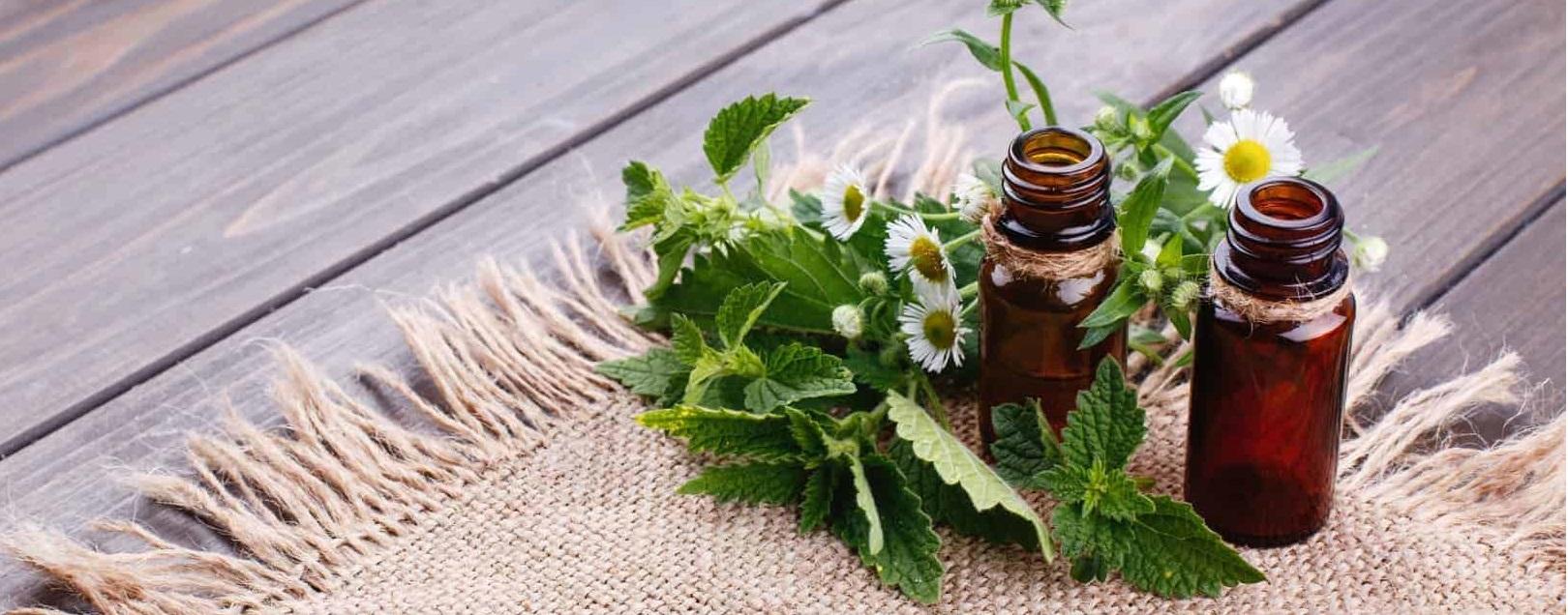 Linha HomeopatiCAM