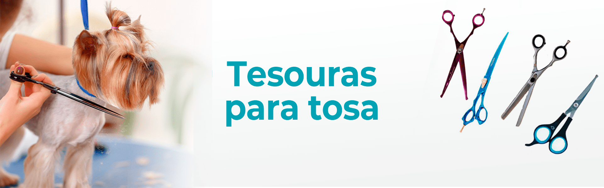 Tesouras - categoria @Desktop