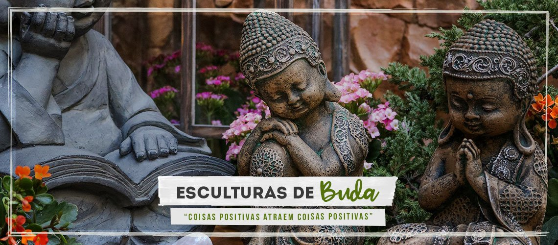 Banner Budas Pagina Inicial