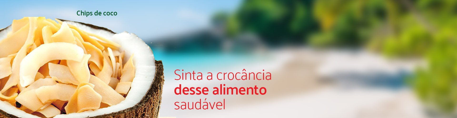 Banner coco