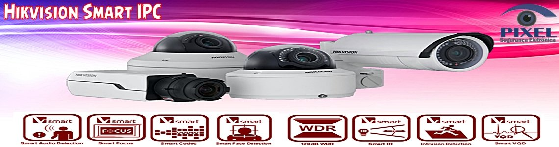 Hikvision Smart IPC 1