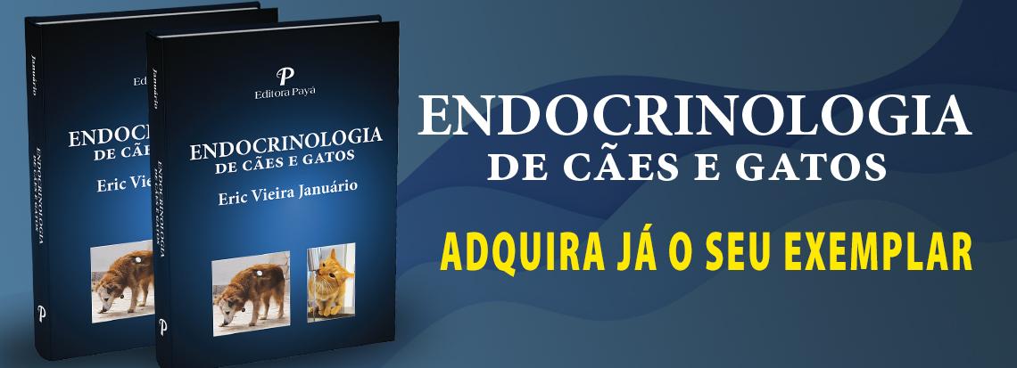 Breve lançamento Endocrinologia