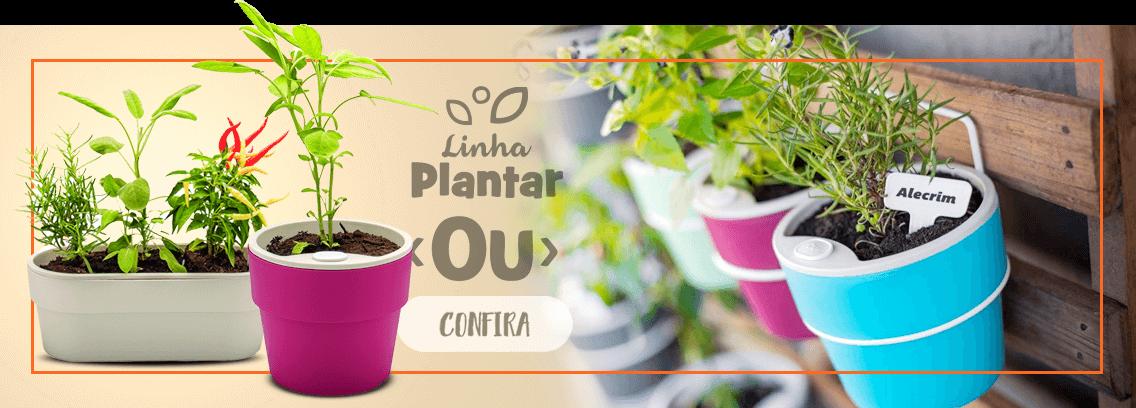 Linha Plantar