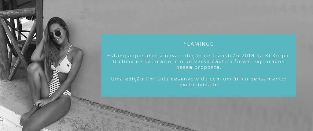 Flamingos - Banner