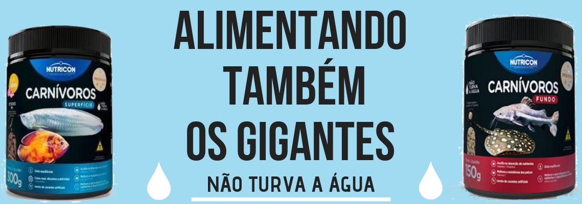 NUTRICON CARNIVOROS