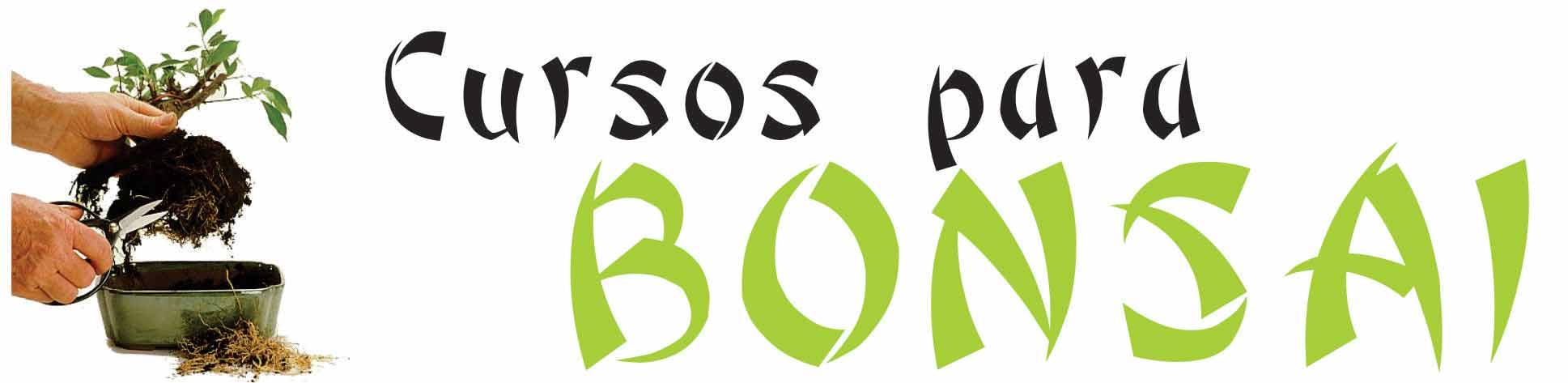 Cursos para Bonsai