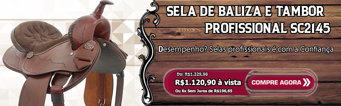 17-05 banner SC2145