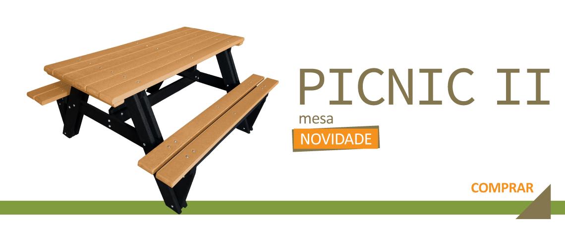 Mesa Picnic II