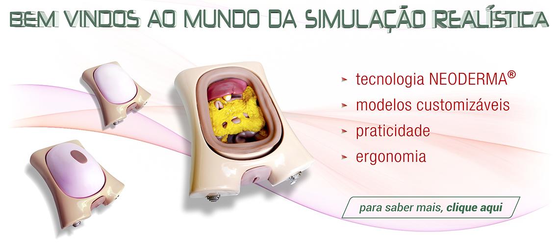 SIMULAÇÃO REALISTA