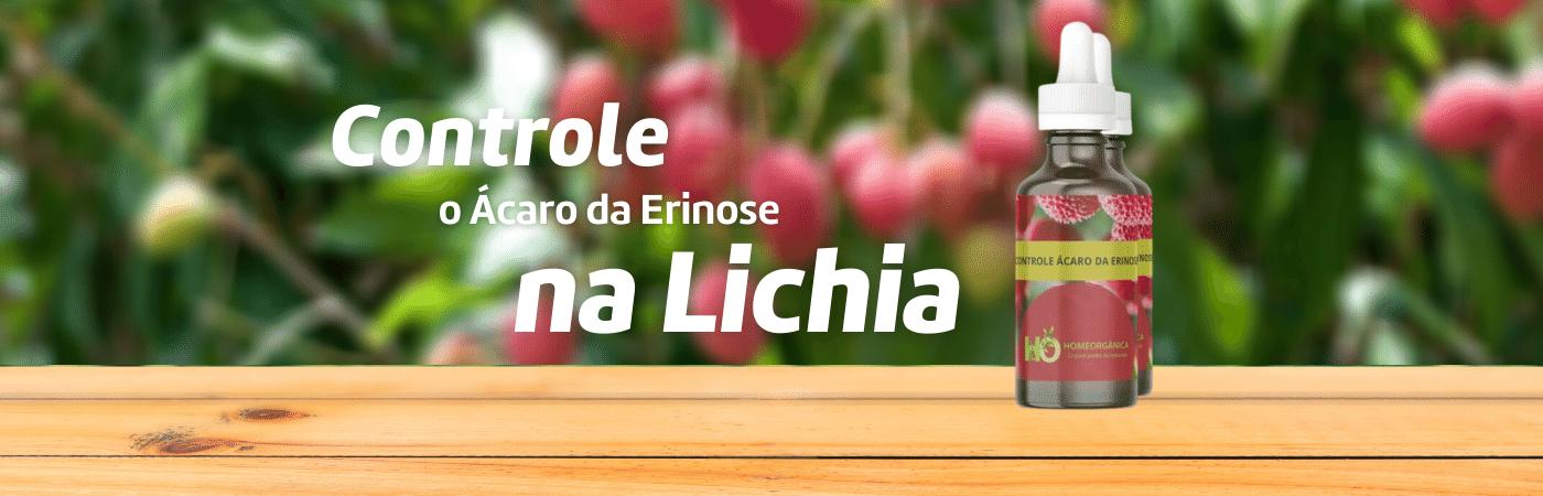 Lichias OKK