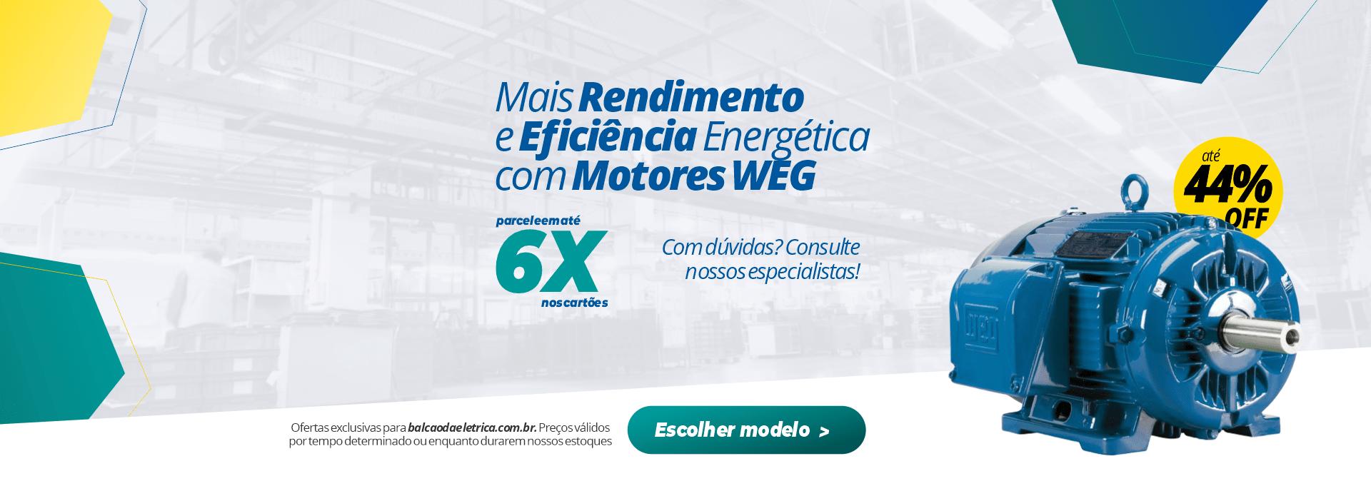 Motor WEG