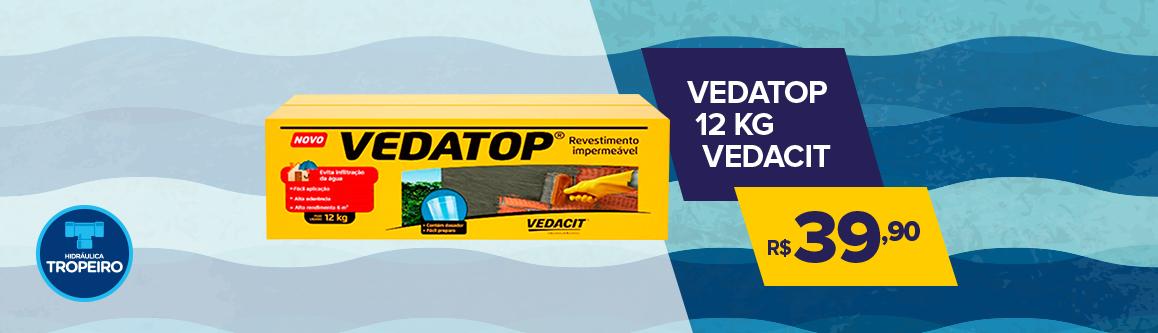 VedaTop