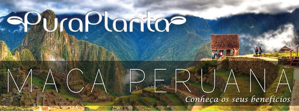 PURAPLANTA - Maca Peruana, benefícios da maca peruana
