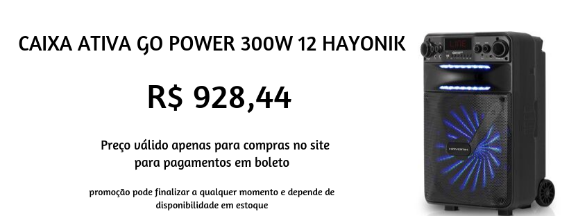hayonik 300