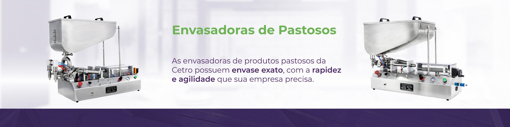 Categorias - Envasadoras de Pastosos