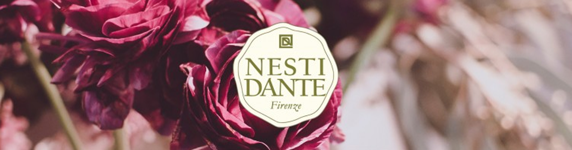 Banner Nesti Dante