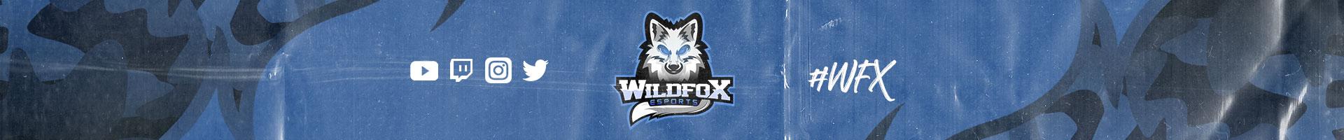 ORGANIZAÇÃO: WILD FOX E-SPORTS