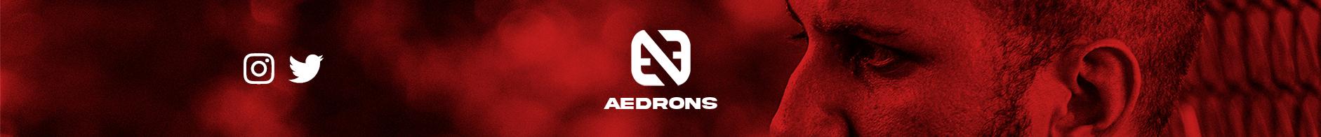 ORGANIZAÇÃO: AEDRONS